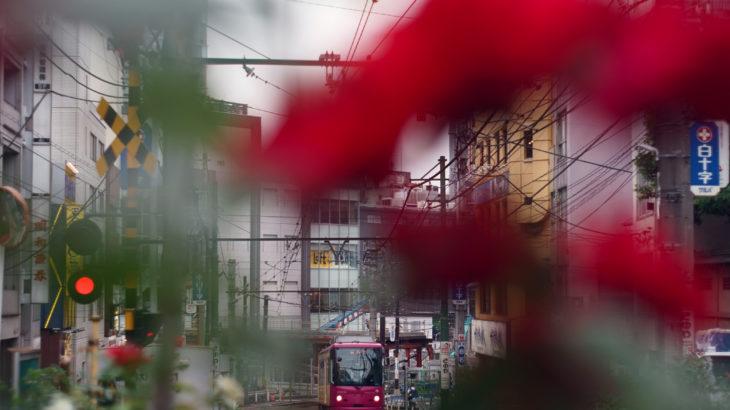 東京都電車